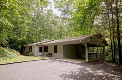 1030 Middle Connestee Trail, Brevard, NC 28712 - MLS#: 3427232