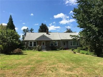 1883 Cove Road, Rutherfordton, NC 28139 - MLS#: 3429163