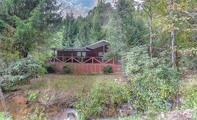 314 Little Creek Road, Hot Springs, NC 28743 - MLS#: 3432811