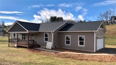 778 Old Nc 20 Highway, Leicester, NC 28701 - MLS#: 3439589