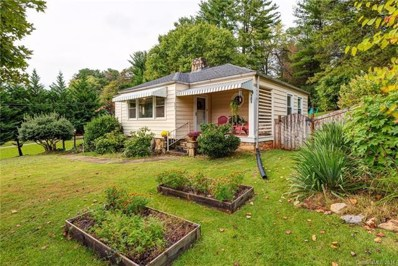 101 Wendover Road, Asheville, NC 28806 - MLS#: 3443841