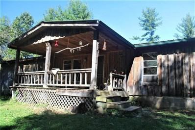 46 Meadow Fork School Road, Hot Springs, NC 28743 - MLS#: 3444983