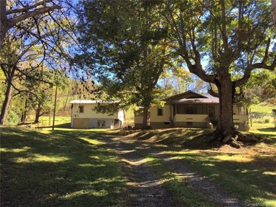 454 Bone Camp Road, Marshall, NC 28753 - MLS#: 3445600