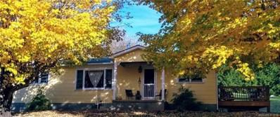 60 Shay Lane, Canton, NC 28716 - MLS#: 3450127