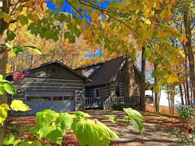 1277 Long Branch Road, Maggie Valley, NC 28751 - MLS#: 3453821