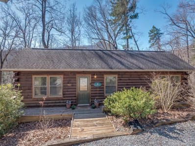 401 Seton Road, Lake Lure, NC 28746 - MLS#: 3485323