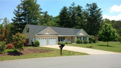 22 Chickwood Trail, Weaverville, NC 28787 - MLS#: 3487654
