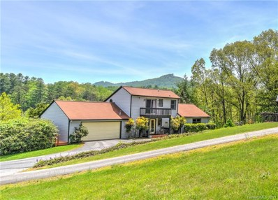 202 New Stock Road, Asheville, NC 28804 - #: 3490088