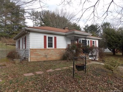 165 Old County Home Road, Asheville, NC 28806 - MLS#: 3490856