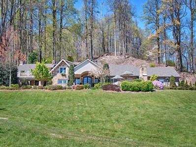 370 Pinnacle Mountain Road, Zirconia, NC 28790 - #: 3510431