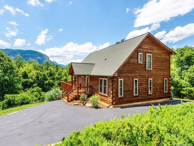 173 Mistletoe Park, Lake Lure, NC 28746 - MLS#: 3512768