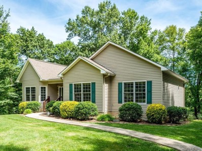 124 Woodchuck Way, Mills River, NC 28759 - #: 3521798