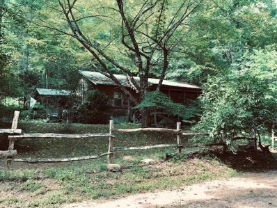 170 Jenkins Cove, Robbinsville, NC 28771 - #: 3526278