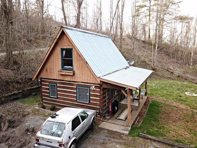 168 Travelers Nest Road, Sylva, NC 28779 - #: 3528485