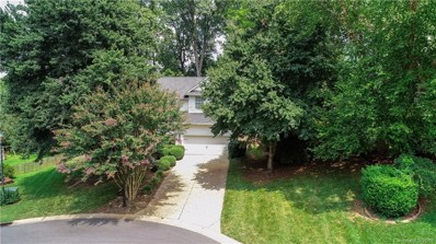 332 Brixham Place, Fort Mill, SC 29708 - #: 3536409