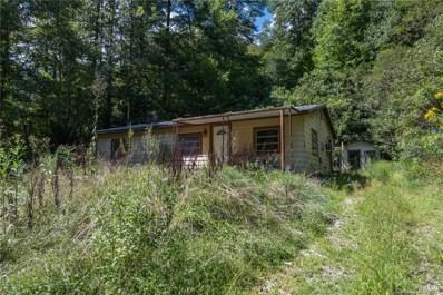 115 Morris Hollow Road, Old Fort, NC 28762 - #: 3545191