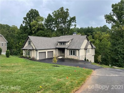 55 Orvis Stone Circle UNIT 829, Biltmore Lake, NC 28715 - #: 3551826
