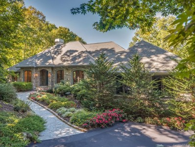 66 Old Hickory Trail, Hendersonville, NC 28739 - MLS#: 3560140
