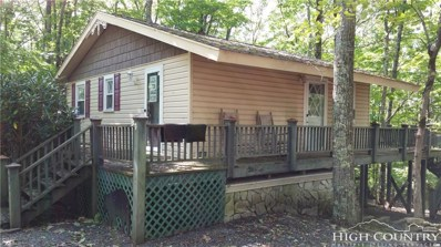819 Pine Ridge Road, Beech Mountain, NC 28604 - MLS#: 185559