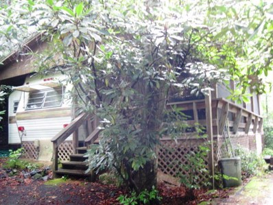 176 Spring Brook Rd, Newland, NC 28657 - MLS#: 193727