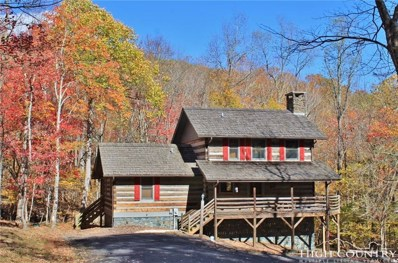 129 Old Orchard Road, Todd, NC 28684 - MLS#: 203392