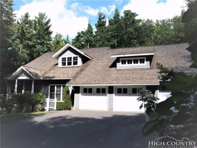 262 High Ridge Lane, Blowing Rock, NC 28605 - MLS#: 203467