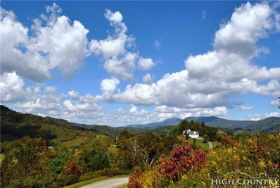 Lot 24 Old Rose Drive, Sugar Grove, NC 28679 - MLS#: 203662