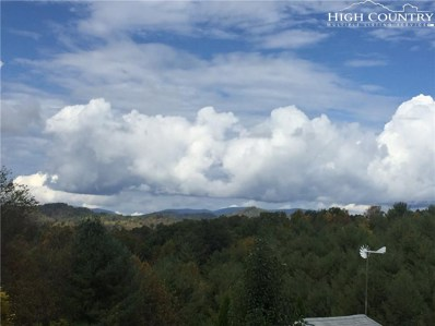 166 Clearview Ridge Road, Crumpler, NC 28617 - MLS#: 204055