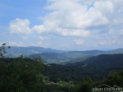 144 Skyleaf Lane UNIT 703, Sugar Mountain, NC 28604 - MLS#: 204340