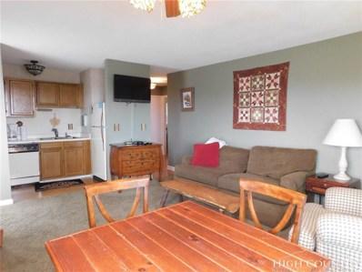 301 Pinnacle Inn Road UNIT 4116, Beech Mountain, NC 28604 - MLS#: 204744