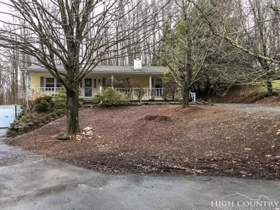 128 Alley Hill Drive, Boone, NC 28607 - MLS#: 205166