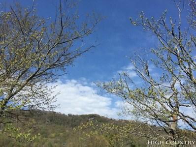 129 Birchwood Lane UNIT 14 D, Beech Mountain, NC 28604 - MLS#: 205244