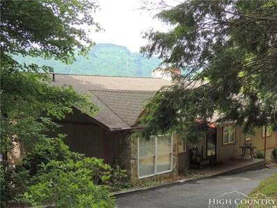 219 Wildcat Rocks Road, Seven Devils, NC 28604 - MLS#: 205410