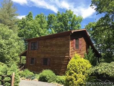 297 S Turkey Ridge, Lansing, NC 28643 - MLS#: 205873