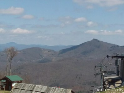 104 Sugar Ski Drive UNIT 416, Sugar Mountain, NC 28604 - MLS#: 206708
