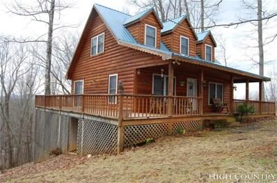 61 Lucky Hill Road, Grassy Creek, NC 28631 - MLS#: 206918