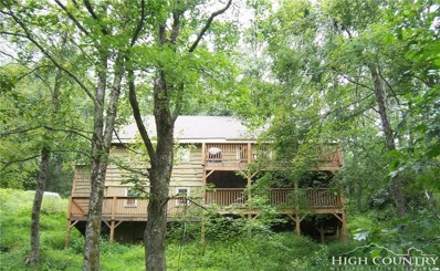 169 Galax Circle, Blowing Rock, NC 28605 - MLS#: 206928