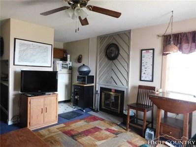 301 Pinnacle Inn Road UNIT 1302, Beech Mountain, NC 28604 - MLS#: 207130
