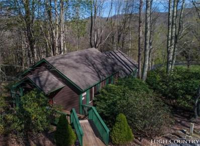 118 Upper Fiddlestix UNIT 508, Boone, NC 28607 - MLS#: 207272