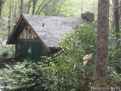 147 Teaberry Trail, Beech Mountain, NC 28604 - MLS#: 207563