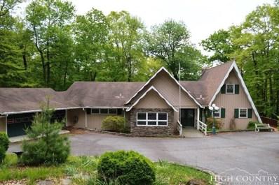 877 Ridge Road, Roaring Gap, NC 28668 - MLS#: 207641