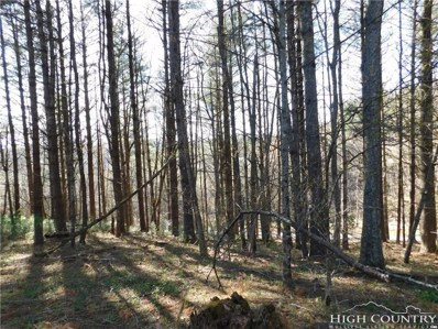 Tract L-12 Panorama Drive, Todd, NC 28684 - MLS#: 207674