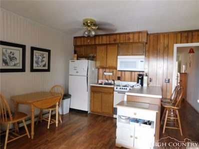 301 Pinnacle Inn Road UNIT 3130, Beech Mountain, NC 28604 - MLS#: 207715