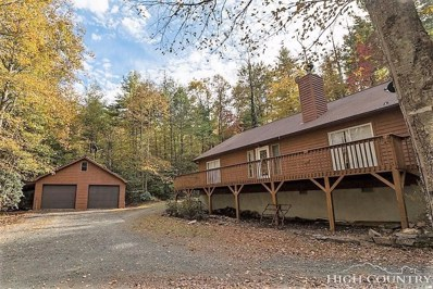 303\/305 Signal Tree Road, Deep Gap, NC 28618 - MLS#: 208427