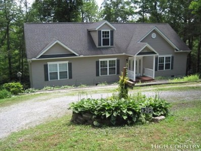 291 Teaberry Lane, Newland, NC 28657 - MLS#: 208532