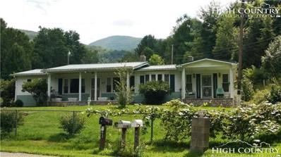 860 Camp Joy Road, Zionville, NC 28698 - MLS#: 208542