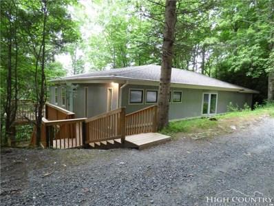 213 Poplar Ridge, Banner Elk, NC 28604 - MLS#: 208565