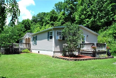 207 Wards Branch Road, Sugar Grove, NC 28679 - MLS#: 208856