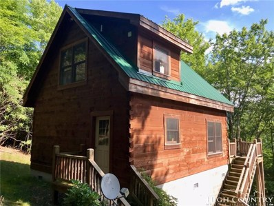 202 Rhododendron Drive, Beech Mountain, NC 28604 - MLS#: 208999