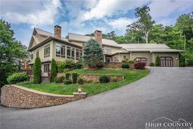 221 Kestrel Drive, Blowing Rock, NC 28605 - MLS#: 209044